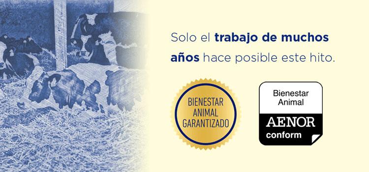Bienestar Animal Garantizado por Aenor en Pascual