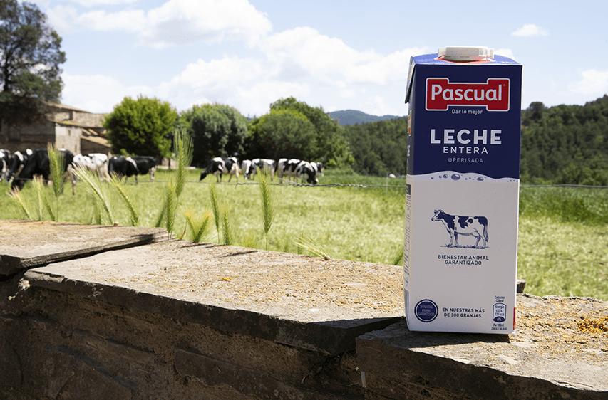 Leche de Bienestar Animal - Leche Pascual